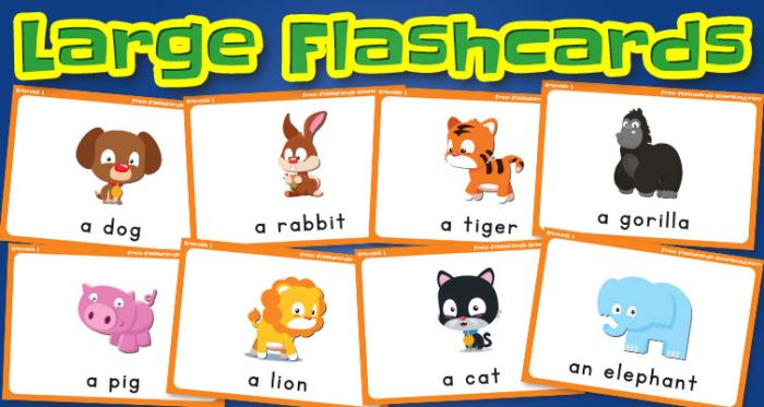 animals large flashcards set1 captions