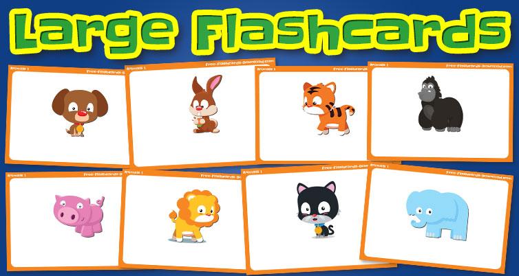 animals large flashcards set1