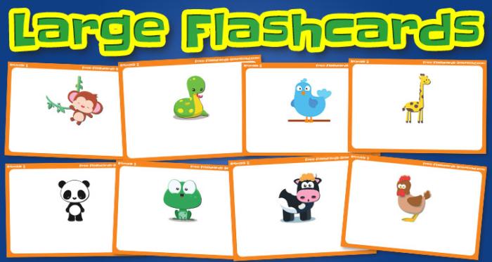 animals large flashcards set2