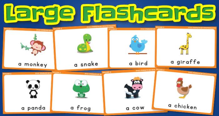 animals large flashcards set2 captions