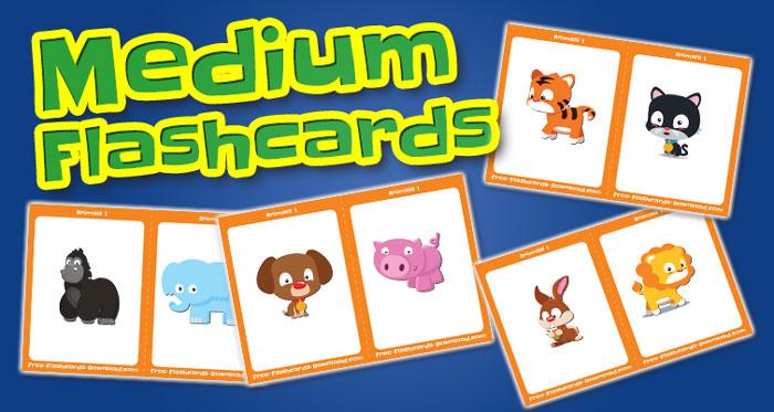 animals medium flashcards set1