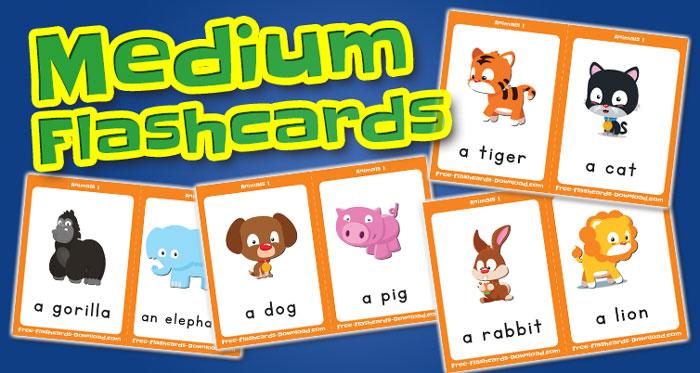 animals medium flashcards set1 captions