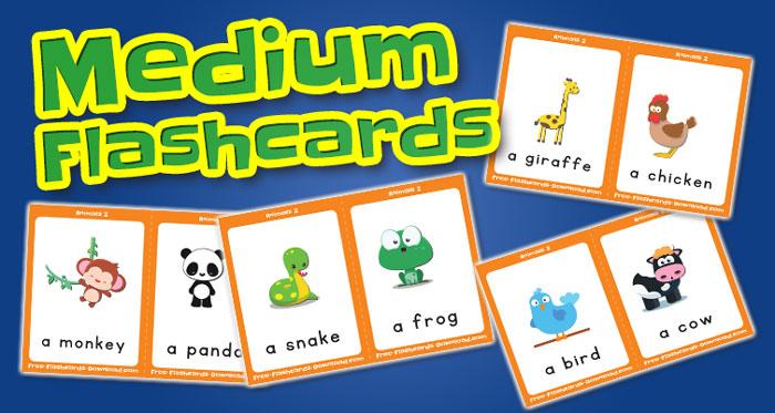 animals medium flashcards set2 captions